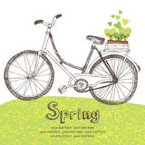 Vintage bicycle with spring seedlings Stock Photography