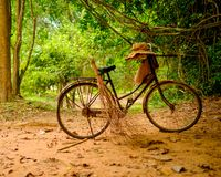 Vintage bicycle standing in the forest Royalty Free Stock Image
