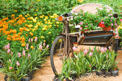 Vintage bicycle tricycle. Stock Photography