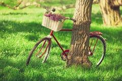 Vintage bicycle Stock Image