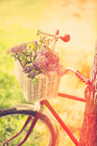 Vintage bicycle Stock Photos