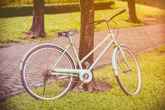 Vintage bicycle waiting near tree. Cross process picture style. Royalty Free Stock Photography