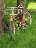 Vintage bicycle waiting for the next ride. Royalty Free Stock Images