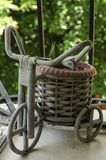 Vintage bicycle with wicker basket in the terrace garden royalty free stock photo