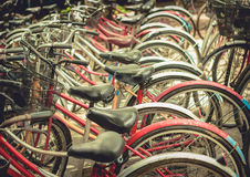 Vintage bicycles picture style. Urban old bicycle, Service and Bicycle rental Stock Photos