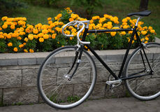 Vintage bike over flowerbed with yellow flowers Stock Image