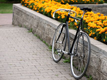 Vintage bike over flowerbed with yellow flowers Royalty Free Stock Image