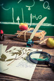Vintage biology lesson at school Royalty Free Stock Image