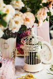 Vintage bird cage in pink romantic still life Royalty Free Stock Images