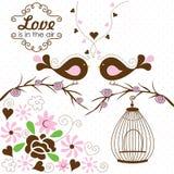 Vintage bird cage vector Royalty Free Stock Image