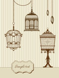 Vintage bird cages. Vintage card with three birdcages Royalty Free Stock Photography