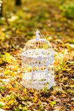 Vintage birdcage in the autumn park Stock Photography