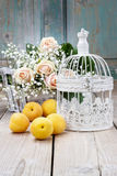 Vintage birdcage, beautiful pink roses and gypsophila paniculata Stock Photos