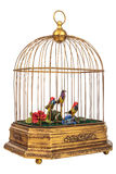 Vintage birdcage with fake little birds isolated on white Stock Images