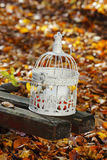 Vintage birdcage standing on wooden bench, white candles inside Royalty Free Stock Photo