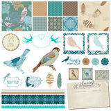 Vintage Birds and Feathers Royalty Free Stock Photo