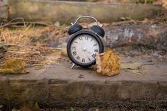 Vintage black alarm clock on autumn leaves. Time change abstract photo. royalty free stock photos