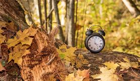 Vintage black alarm clock on autumn leaves. Time change abstract photo. stock images
