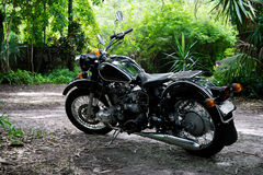 Vintage black motorcycle in subtropical setting Royalty Free Stock Image