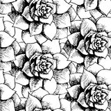 Vintage black and white floral seamless pattern Stock Photos