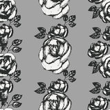 Vintage black and white rose pattern Stock Photography