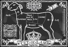 Vintage Blackboard of English Cut of Lamb Royalty Free Stock Photos