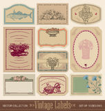 Vintage blank labels set (vector). Set of 10 blank ornate vintage labels, vector (eps8 royalty free illustration