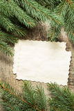 Vintage blank paper cards with christmas tree branches Royalty Free Stock Photos