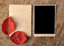 Vintage blank photo frame Stock Images