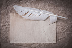 Vintage blank sheet feather on crumpled wrapping paper Royalty Free Stock Photo