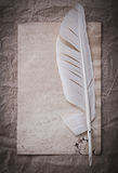Vintage blank sheet feather on crumpled wrapping paper Stock Photo