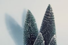 Vintage Blue Firs