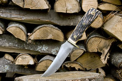 Vintage bone handle knife. Vintage bone handled knife with a woodpile background stock image