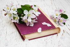 Vintage book with apple blossom Stock Images