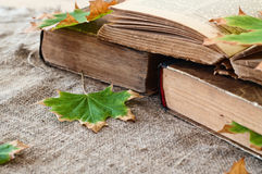 Vintage book with autumn maple leaves Stock Image