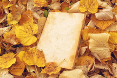 Vintage book with blank covers. As copy space on fallen autumn leaves background Stock Images