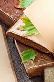 Vintage book with blank pages and with autumn leaves maple stock photography