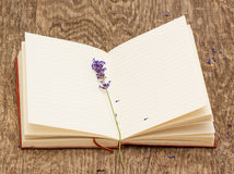 The vintage book and Lavender Royalty Free Stock Photography