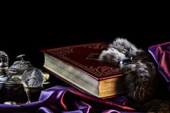 Vintage Book of Mysteries on Satin With Treasures on Black Royalty Free Stock Photography