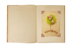 Vintage book open with flower tree card design inside Stock Photography