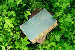 Vintage book pile in summer green grass. Pile of vintage books in summer green grass Royalty Free Stock Photos