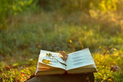 Vintage book of poetry outdoors. With fallen leaves on it stock photos