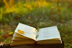 Vintage book of poetry outdoors. With flower on it royalty free stock photos