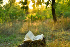 Vintage book of poetry outdoors under a tree. Vintage book of poetry outdoors with fallen leaves on it, under a tree in front of blurred sunset royalty free stock photography