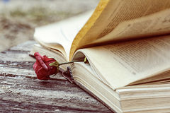 Vintage book and rose Stock Photography