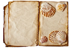 Vintage book with seashell Stock Images