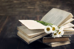 Vintage books and chamomiles. Royalty Free Stock Photography