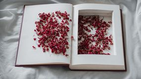 Vintage books with dried red flowers on a white bed. Concept Nostalgic and remembrance vintage background stock photo