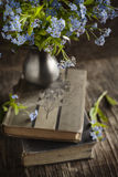 Vintage books and summer blue flowers. royalty free stock image