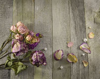 Vintage border with dried roses Stock Photo